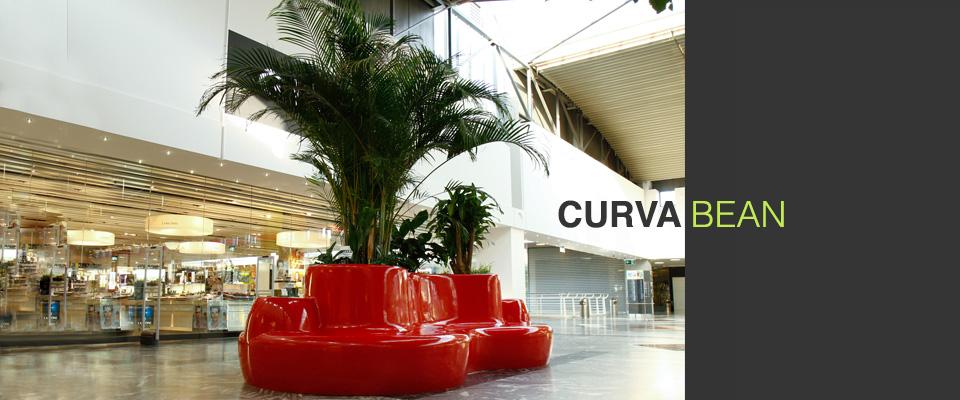 Curva Bean